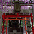 摂社の稲荷神社